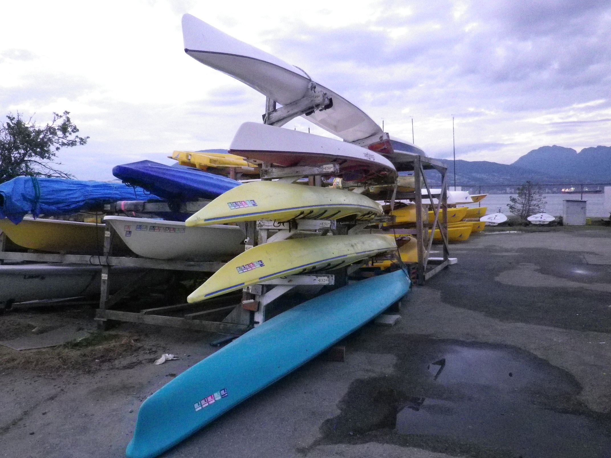 kayaks and surfski